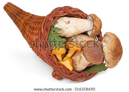 cornucopia filled with fresh ceps and chanterelles  - stock photo