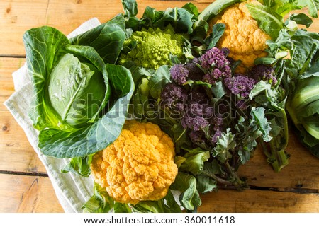 Cornucopia of vegetables from the brassicaceae family: yellow cauliflower, purple sprouting broccoli, cabbage, Romanesco cauliflower with its beautiful fractal shapes. - stock photo