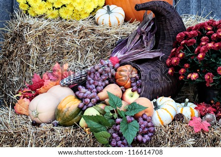 Cornucopia or Horn of Plenty on bales of straw with fresh vegetables and fruit spilling out. - stock photo