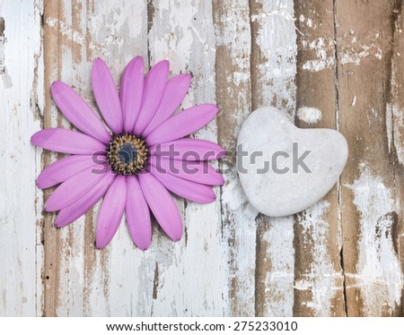 corolla of flower on old wood with stone heart - stock photo