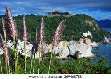 Coromandel Peninsula, Cathedral Cove Marine Reserve, North Island, New Zealand - stock photo