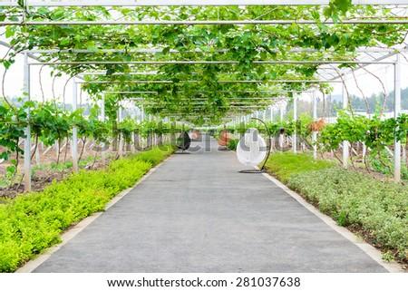 corridor outdoor - stock photo