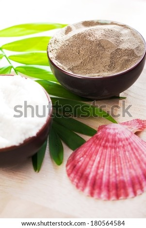 Cosmetic clay and sea salt for spa treatments - stock photo