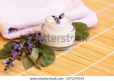 Cosmetic cream and sage - stock photo