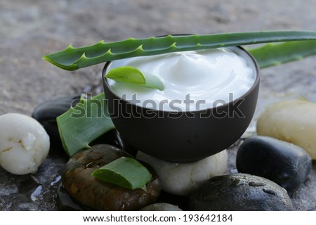 cosmetic cream lotion with natural green fresh aloe vera - stock photo