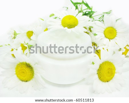 cosmetic creme for face healthcare among daisy flowers - stock photo