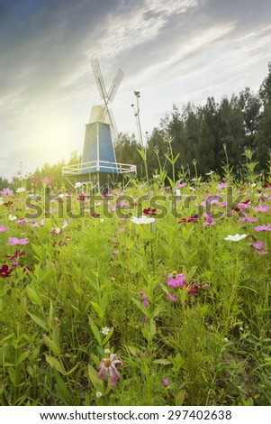 Cosmos wooden windmill