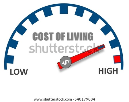 rising cost of living essay This essay will review how the rising fuel prices affect the different macroeconomic variables such as inflation, rising production cost, unequal economic conditions between oil exporting and oil importing nations.