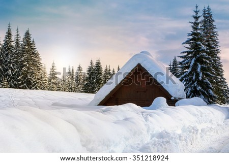 Cosy winter scene with snow covered trees in the mountains in Slovenia