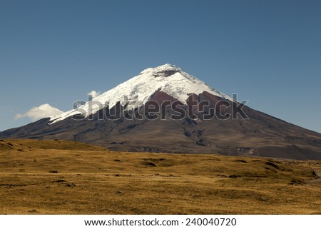 Cotopaxi volcano and moor - stock photo