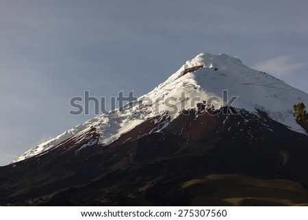 Cotopaxi volcano at dawn, approaching its slopes walking through the wilderness