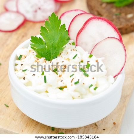cottage cheese with herbs and spices, close-up - stock photo