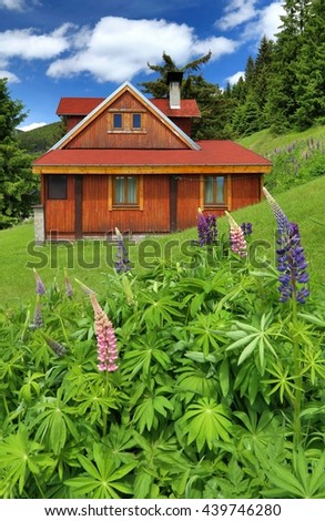 Cottage in mountains - stock photo