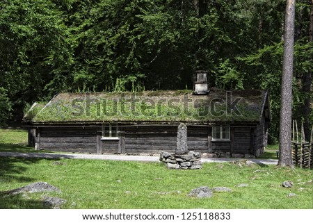 Cottage with a grass roof