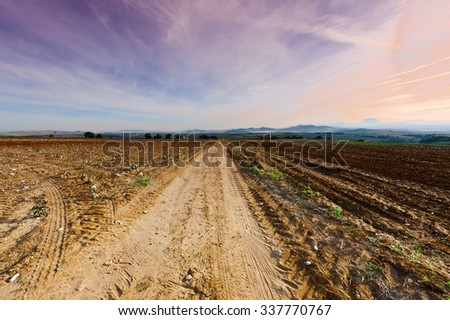 Cotton Field after Harvest at Sunset in Spain