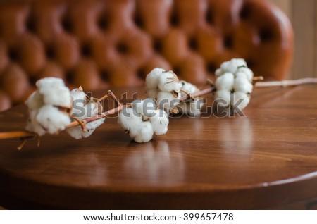 cotton flower - stock photo