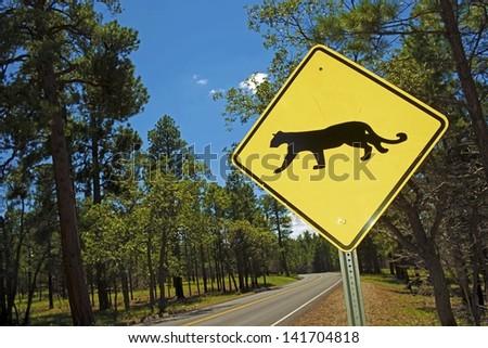 Cougar Crossing - Mountain Lion Xing Traffic Sign in Arizona, USA. - stock photo