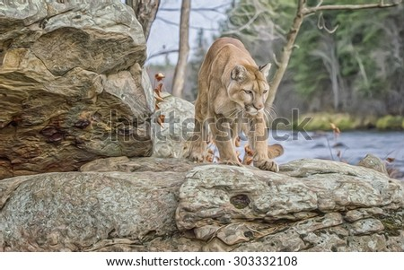 Cougar hunting along river in Northern Minnesota - stock photo