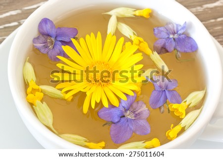 Cough tea with blossoms of colts-foot, violets and cowslip in a white cup - stock photo
