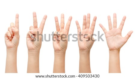 Counting hands 1 to 5 isolated on white background