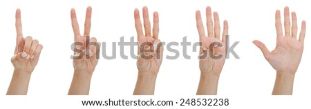 Counting woman hands from one to five, isolated on white.