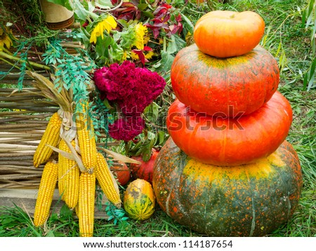 Country background with corn, flowers and pumpkins in a pile