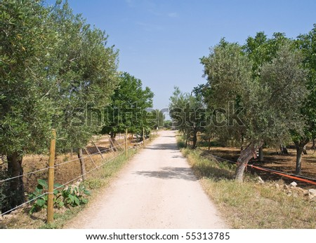 Country footpath. - stock photo