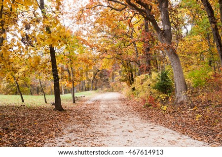 Country gravel road through colorful autumn trees in Missouri. Some breeze movement in tree branches.