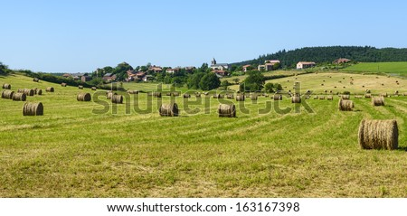 Country landscape in Aveyron, near Saint-Sernin-sur-Rance, France) at summer