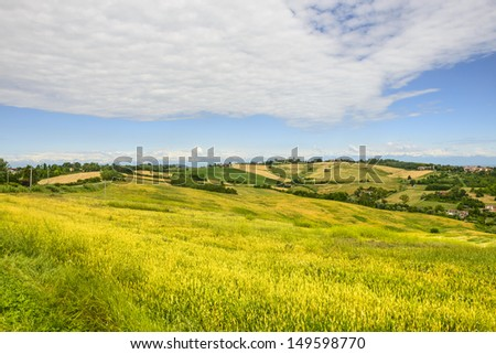 Country landscape of Monferrato (Asti, Piedmont, Italy) at summer, with the Alps in background - stock photo