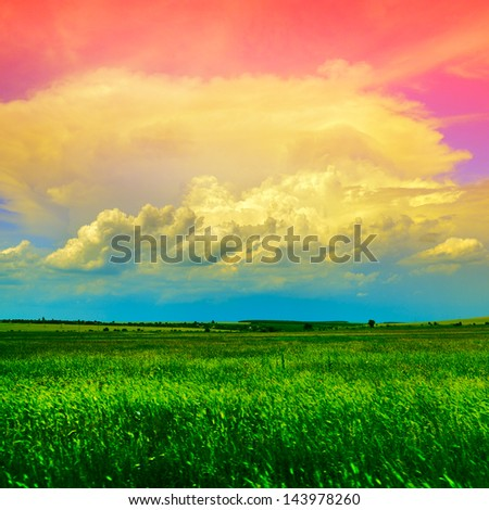 country landscape with green wheat field and blue-pink sky with light clouds - stock photo
