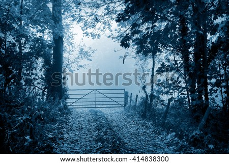 Country lane leads to foggy field beyond a farmer's gate.