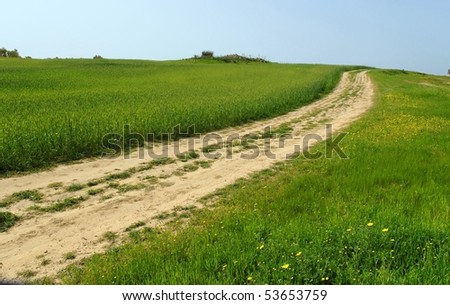 Country road among green hills and meadows