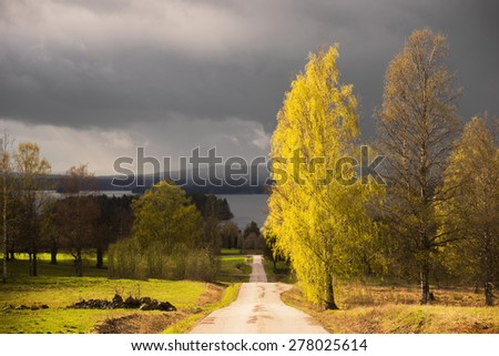 Country road and birch trees with fresh green leaves in sunshine in early summer in the beautiful county of Dalecarlia in Sweden, with dark moody sky and lake Siljan in background - stock photo