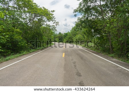 Country road / Asphalt road through the tree clouds on blue sky in summer day / Forest road / Driving on an empty road / Highway
