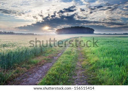 Country road at sunrise