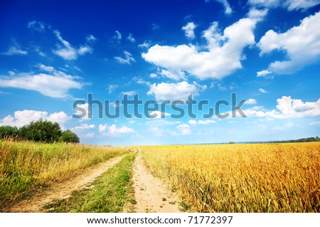 Country road beside wheat field - stock photo
