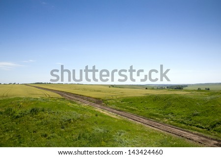 Country road between fields on a sunny day - stock photo