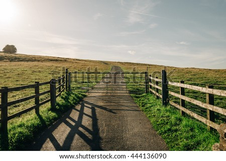 Country road crosses a fence in a green meadow at sunset - stock photo