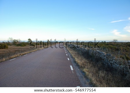 Country road in a barren landscape at the swedish island Oland
