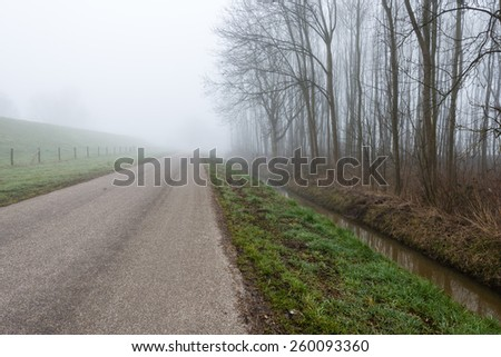 Country road in a rural landscape with a forest with bare trees. It is early in the morning of a  foggy day at the end of the winter season. - stock photo