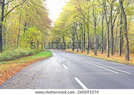 Country road in fall in the Netherlands - stock photo