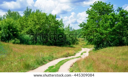 Country road in forest and sky