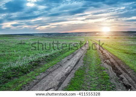 Country road in green field at sunset. Summer landscape.