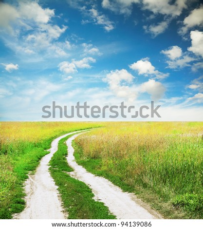 country road in the fields