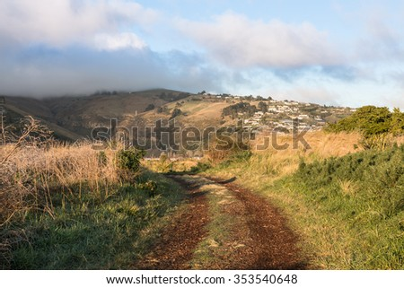 Country road in the foggy morning, New Zealand - stock photo