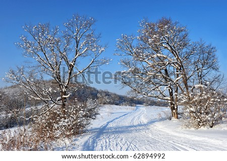 country road in the snow winter forest - stock photo