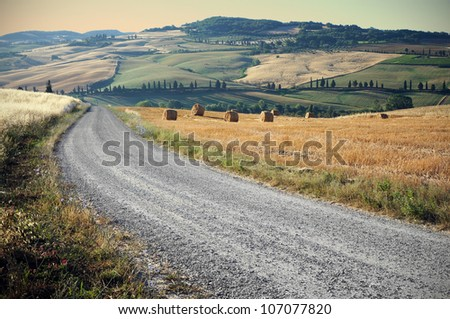 Country road in Tuscany, Italy - stock photo