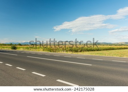 Country Road Landscape In Summer - stock photo
