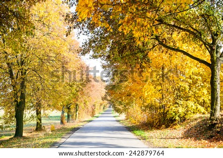 country road leading up to the horizon line , nature series - stock photo